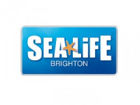 Sealife Brighton